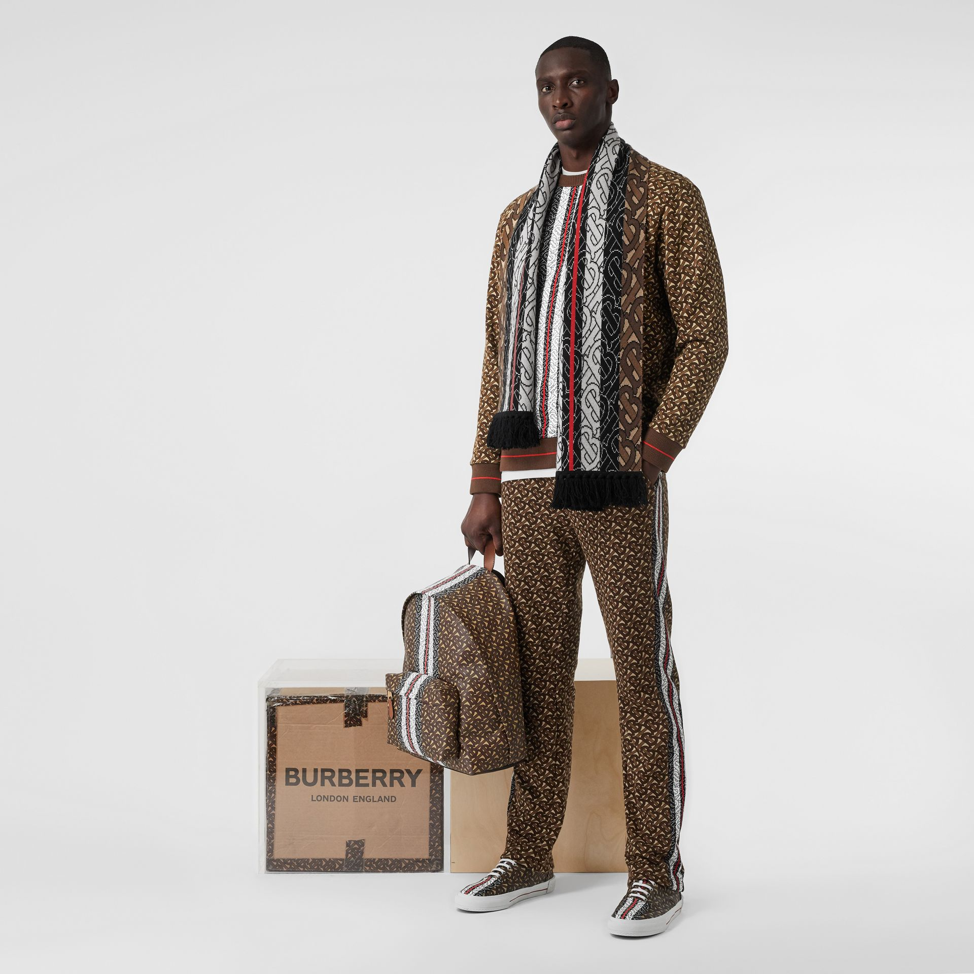 Monogram Stripe Cashmere Scarf in Brown | Burberry - gallery image 10