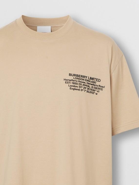 Camiseta oversize de algodão com estampa geográfica (Fulvo Suave)