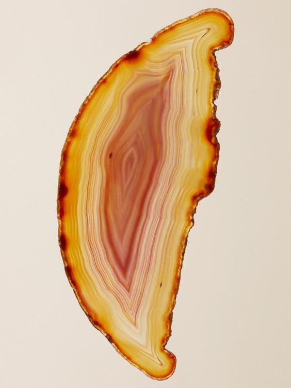 Her London Dream Eau de Parfum 50 ml (50ml) - Mulheres | Burberry - cell image 3