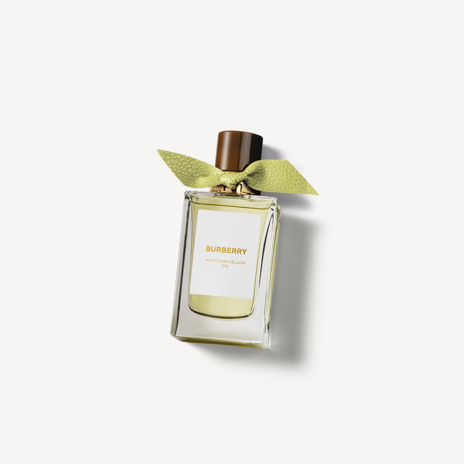 Burberry Signatures Hawthorn Bloom Eau de Parfum 100ml | Burberry Australia - gallery image 0