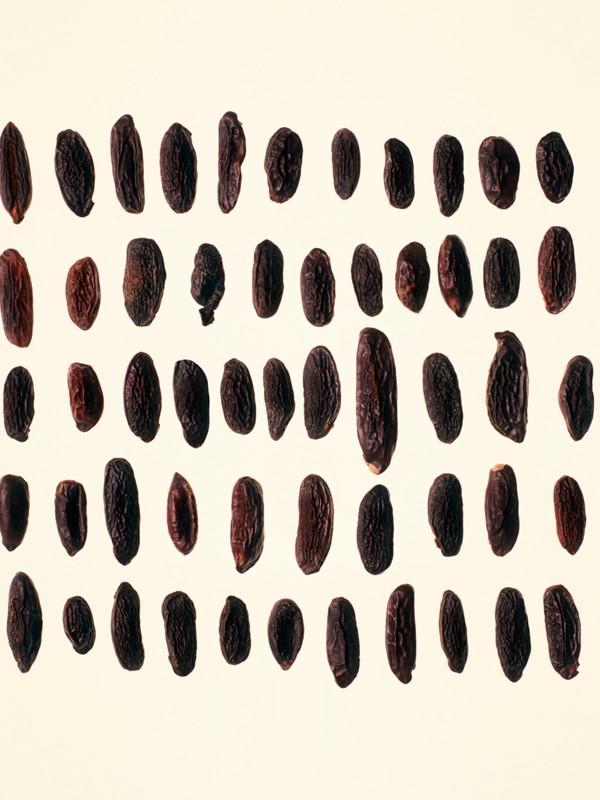 Burberry Signatures Amber Heath Eau de Parfum 100ml | Burberry - cell image 3