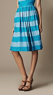 Striped Silk Skirt