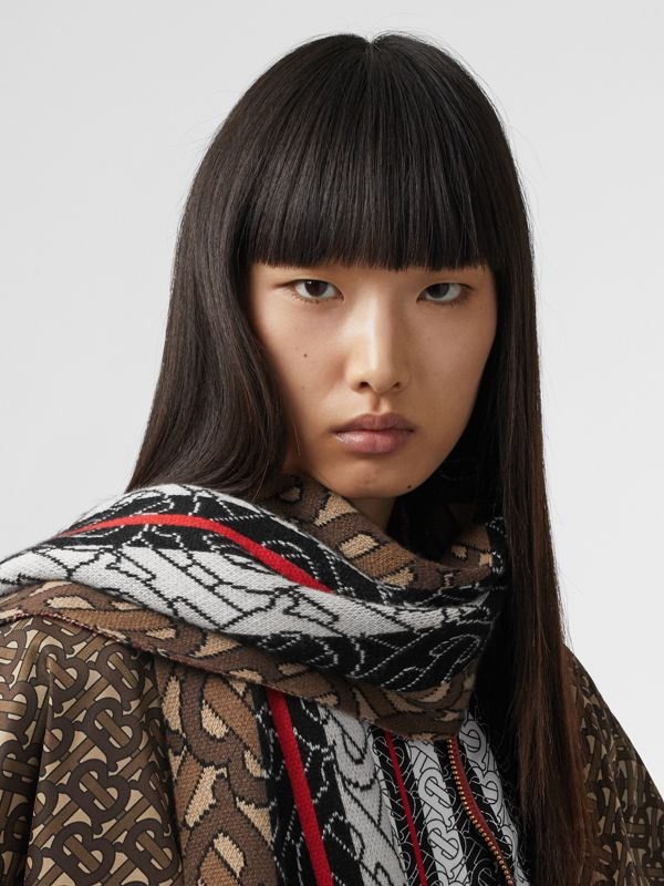 Monogram Stripe Cashmere Scarf in Brown | Burberry - cell image 2