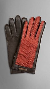 Python Detail Leather Gloves