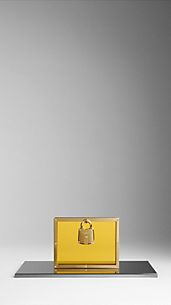 Framed Perspex Clutch