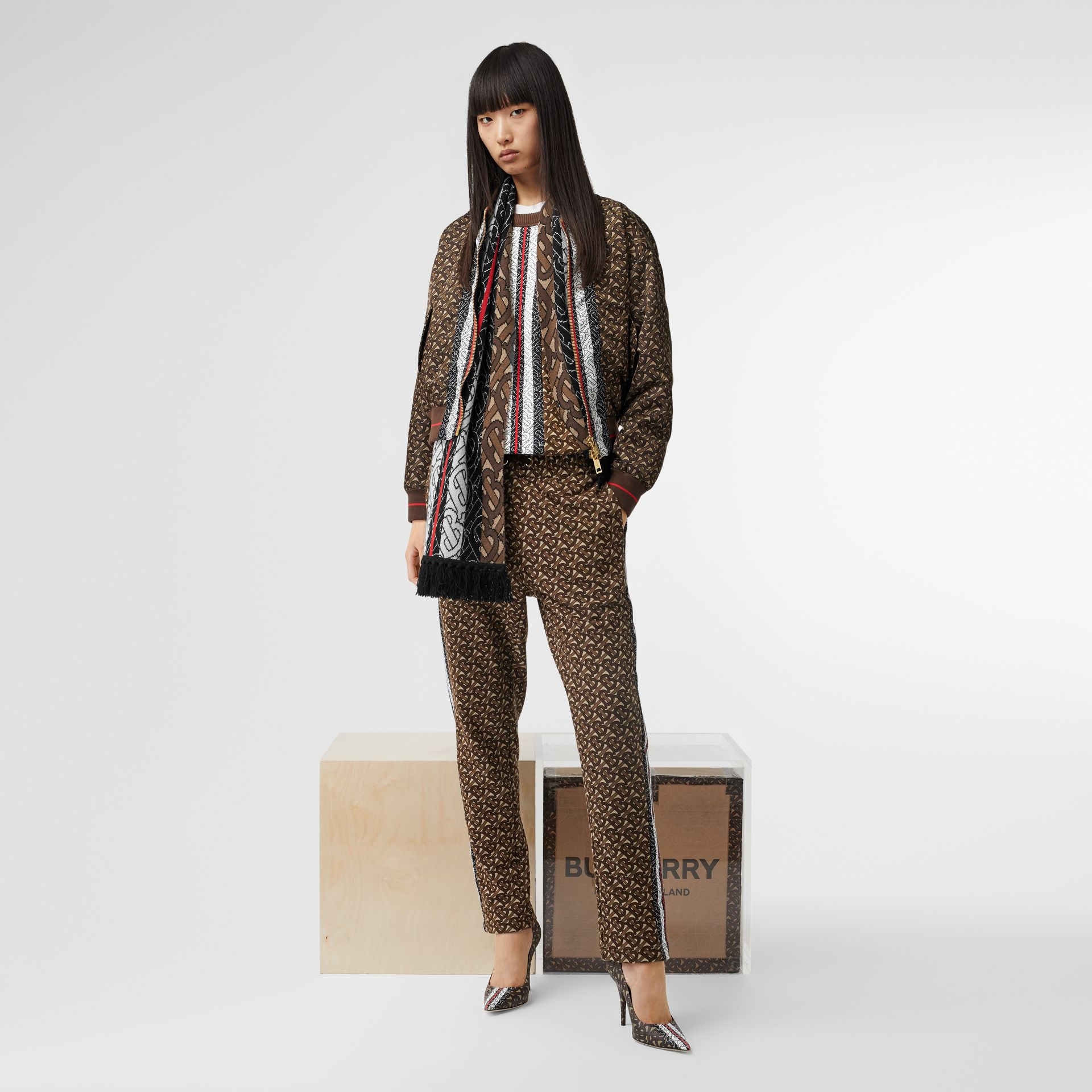 Monogram Stripe Cashmere Scarf in Brown | Burberry - gallery image 9