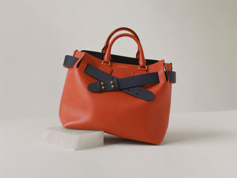 b19dfaf7fcab The Small Leather Belt Bag in Deep Claret - Women