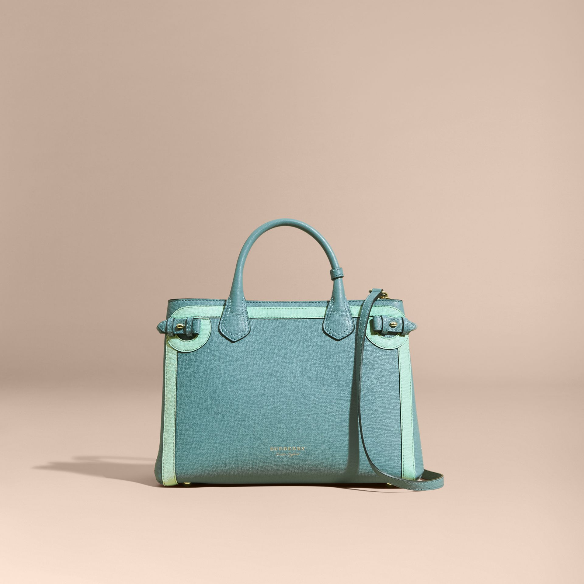 The Medium Banner in Leather with Tonal Appliqué in Celadon Blue - Women | Burberry - gallery image 9