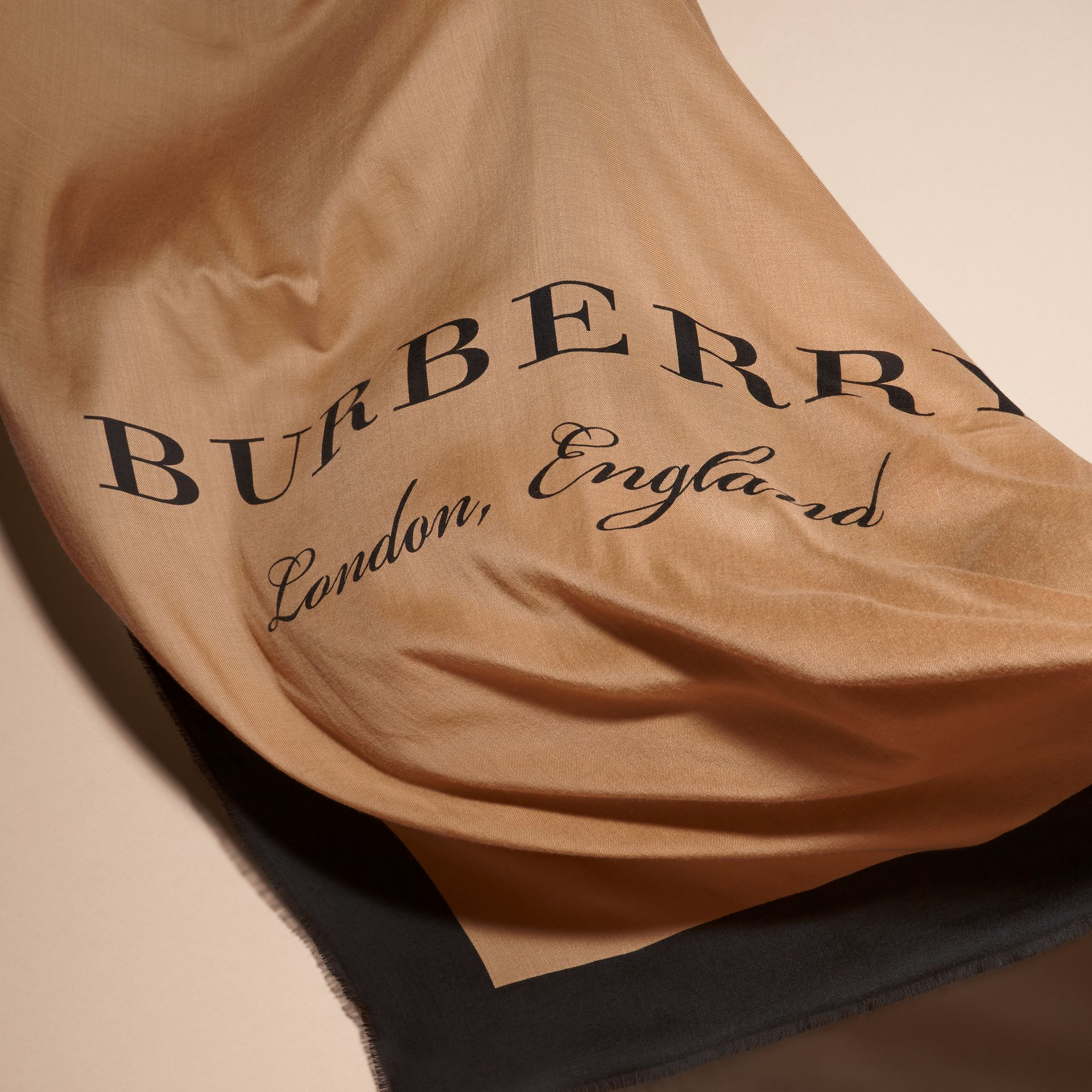 Camel/black Burberry Print Cashmere Scarf - gallery image 4