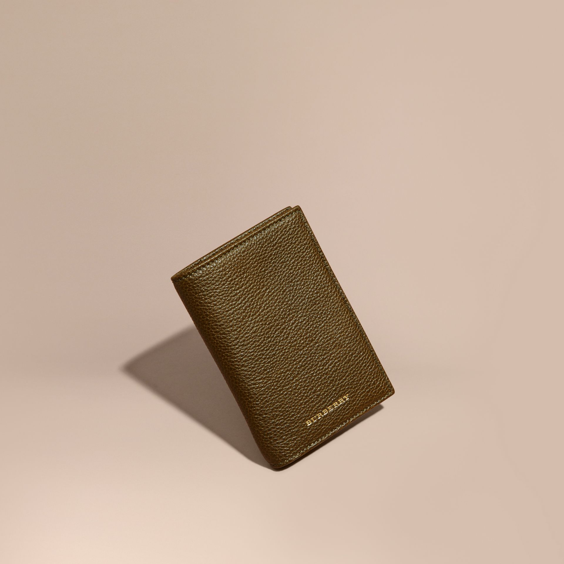 Olive Grainy Leather Passport and Card Holder Olive - gallery image 1