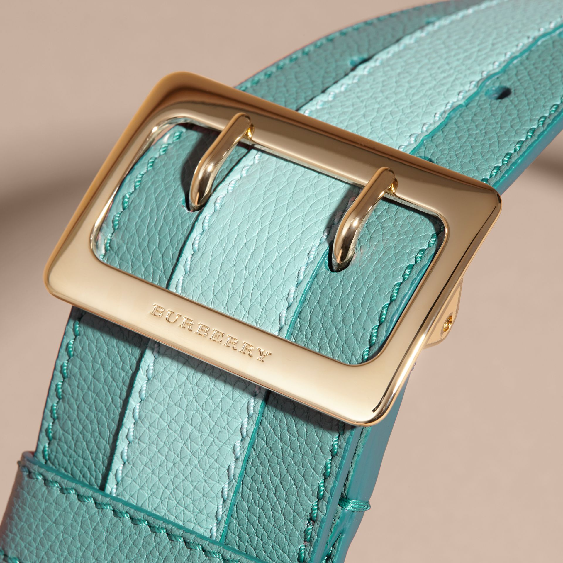 Celadon blue Appliquéd Textured Suede and Leather Belt Celadon Blue - gallery image 2