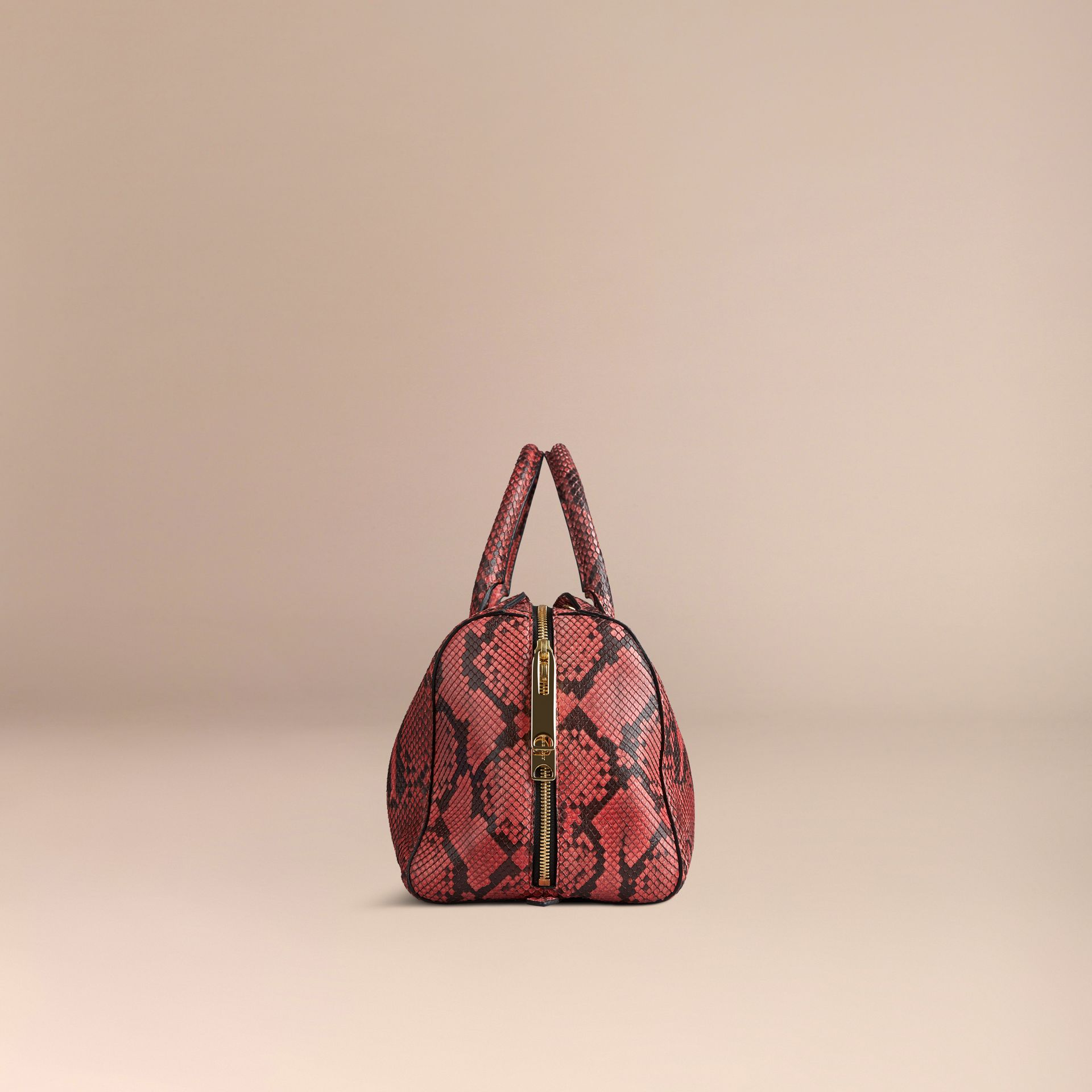 Peony The Medium Alchester in Python - gallery image 6