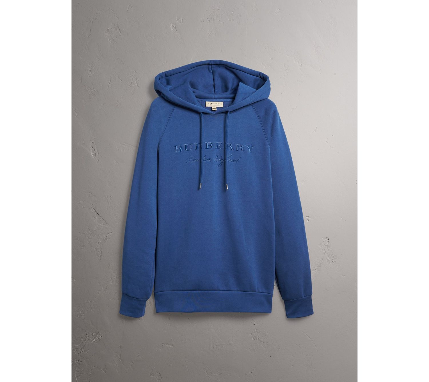 Embroidered Hooded Sweatshirt in Bright Blue