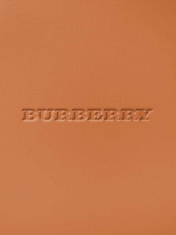 Burberry Cashmere Compact – Almond No.43 - Women | Burberry United States - cell image 1