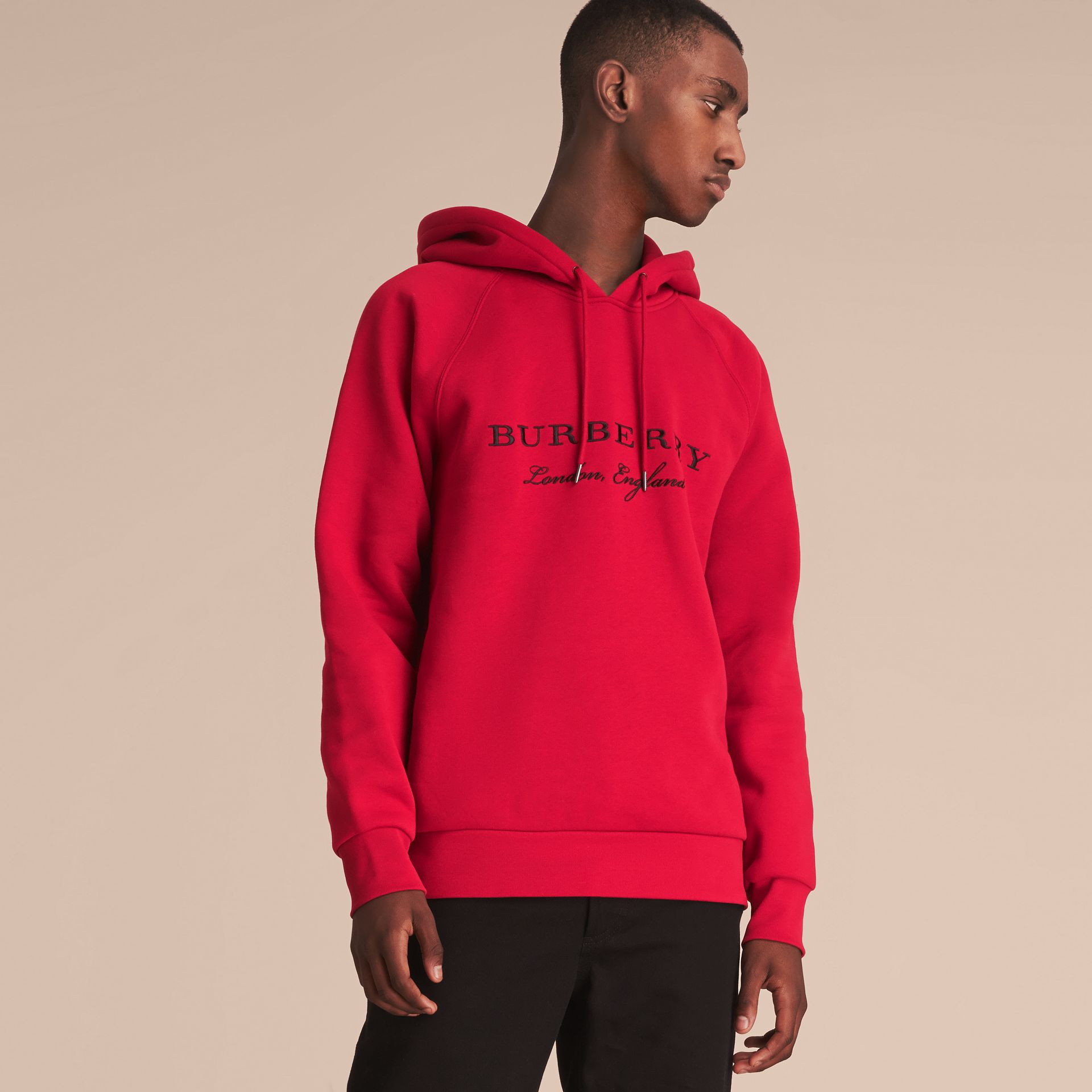 Embroidered Hooded Sweatshirt Parade - gallery image 6