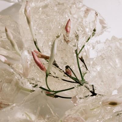 Burberry - Eau de Parfum MyBlush 90ml - 2