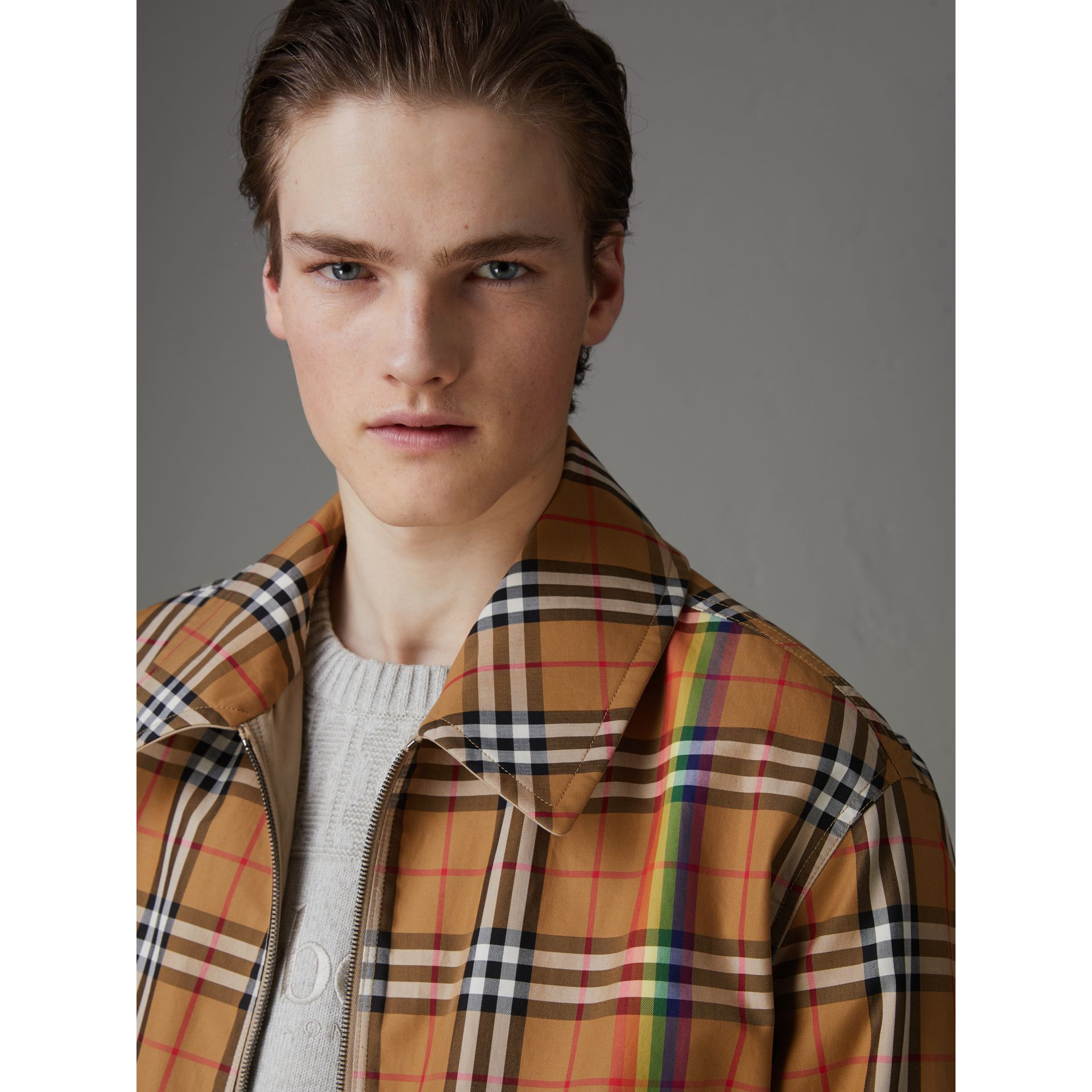 Rainbow Vintage Check Harrington Jacket in Antique Yellow/rainbow - Men | Burberry Hong Kong - gallery image 1