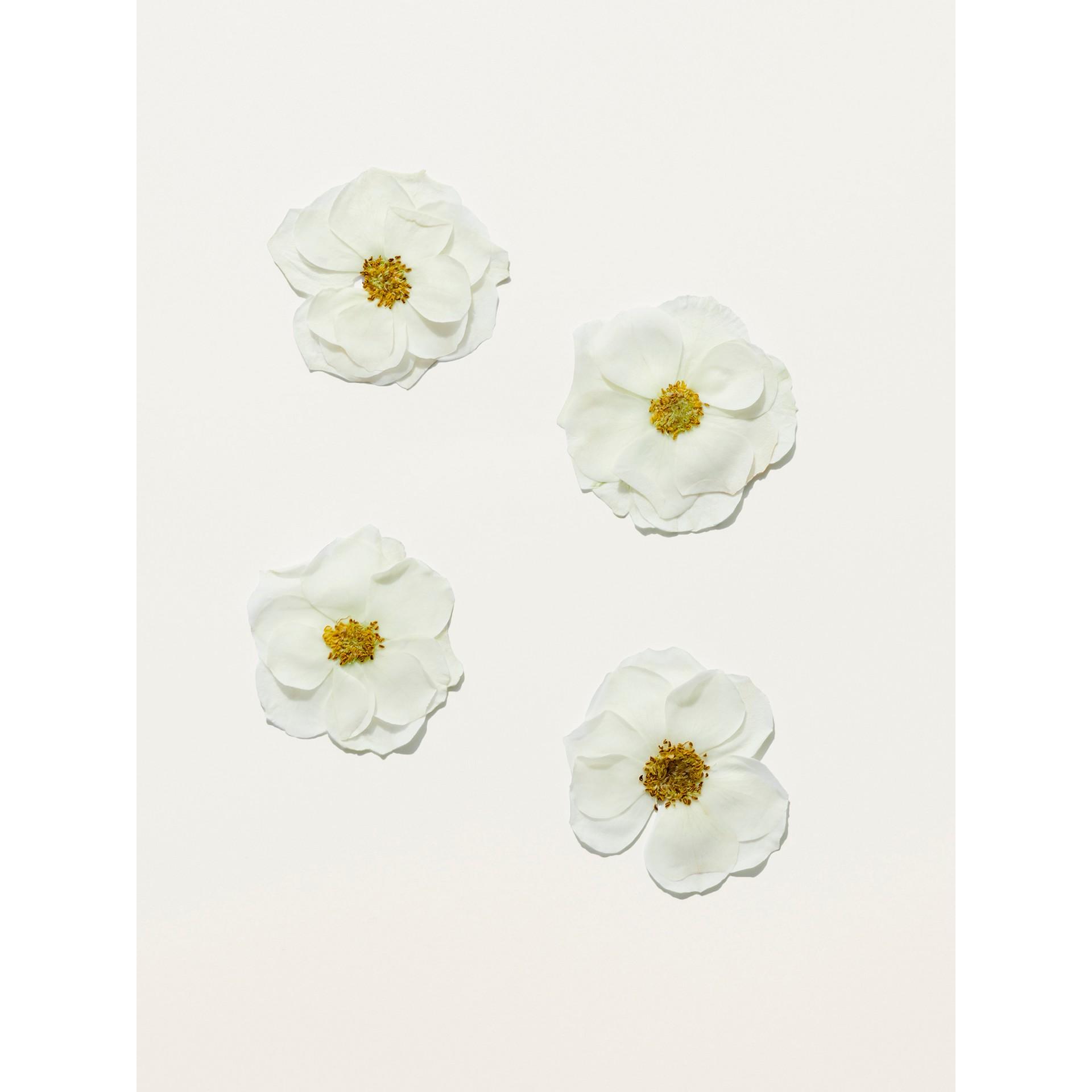 Her Blossom Eau de Toilette 30ml - Women | Burberry United States - gallery image 2
