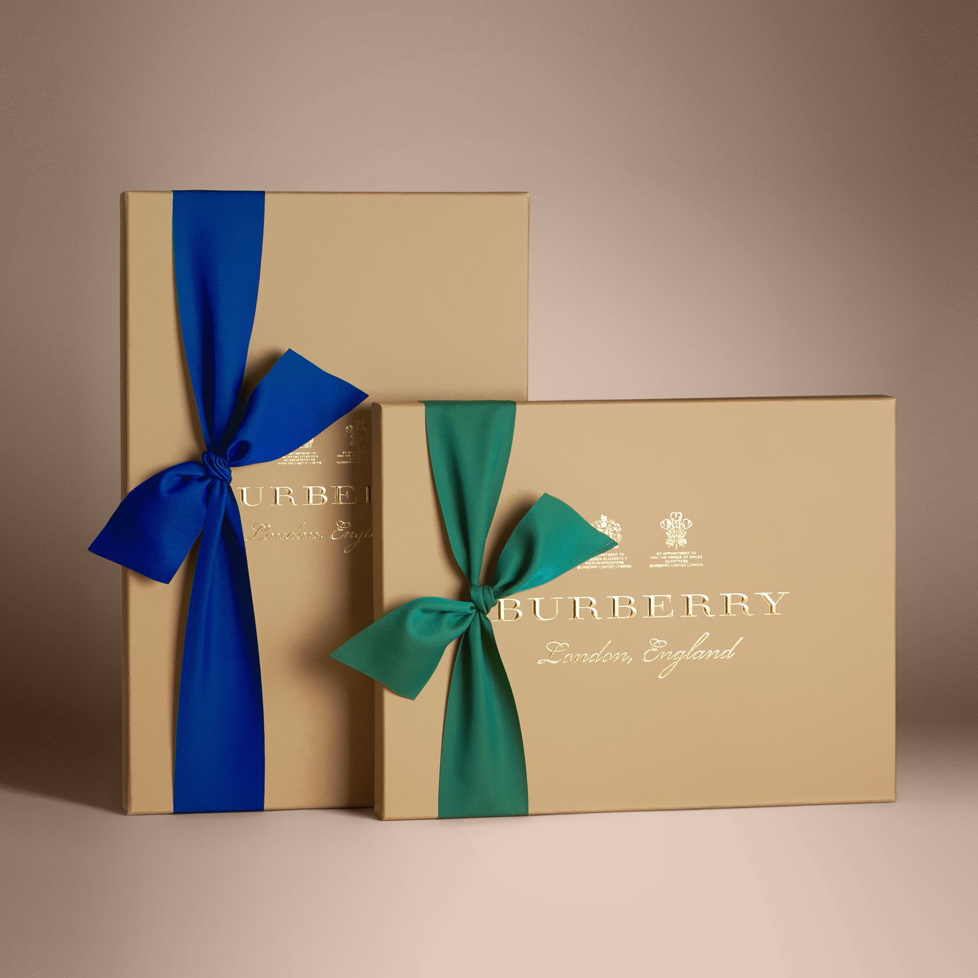 Check Cotton Shirt in New Classic - Women | Burberry Singapore - gallery image 7