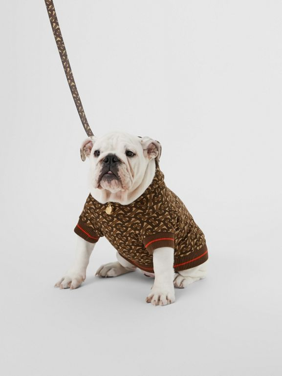 Monogram Print E-canvas Dog Leash in Bridle Brown | Burberry - cell image 1