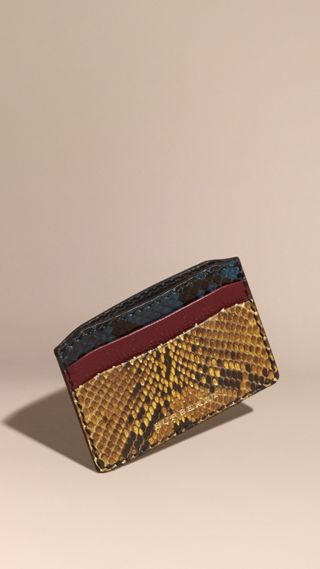 Colour Block Snakeskin and Leather Card Case