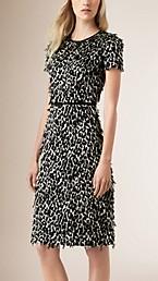 Animal Print Fil Coupé Shift Dress