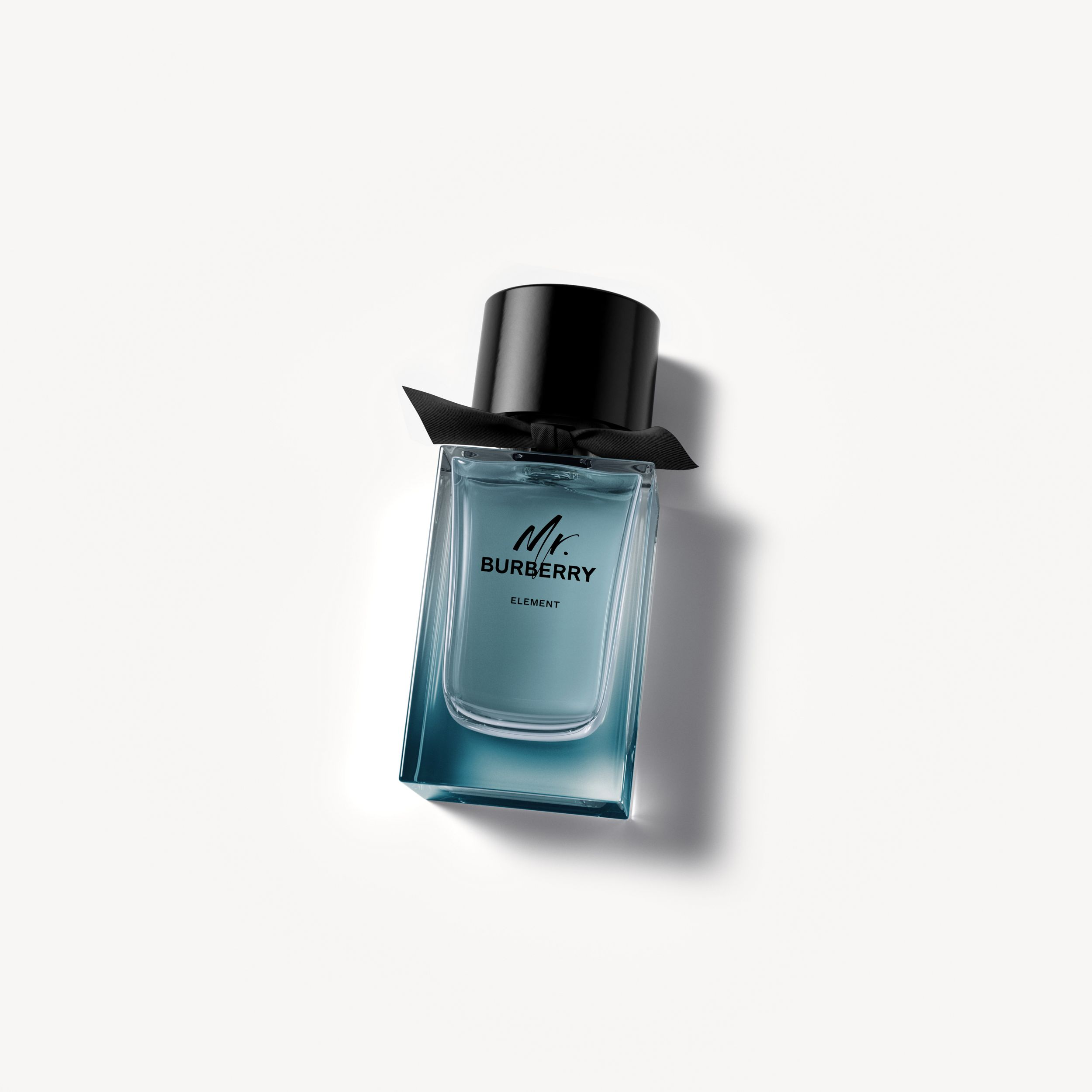 Mr. Burberry Element Eau de Toilette 100ml - Men | Burberry - 1