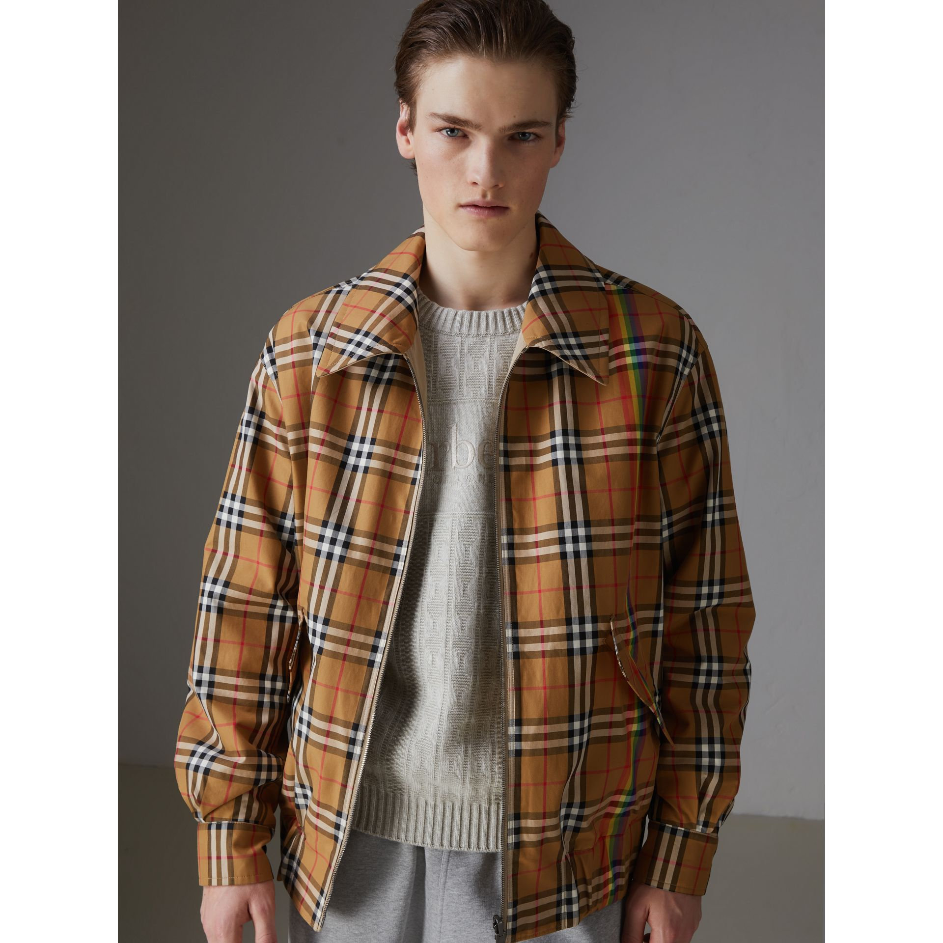 Rainbow Vintage Check Harrington Jacket in Antique Yellow/rainbow - Men | Burberry United States - gallery image 7
