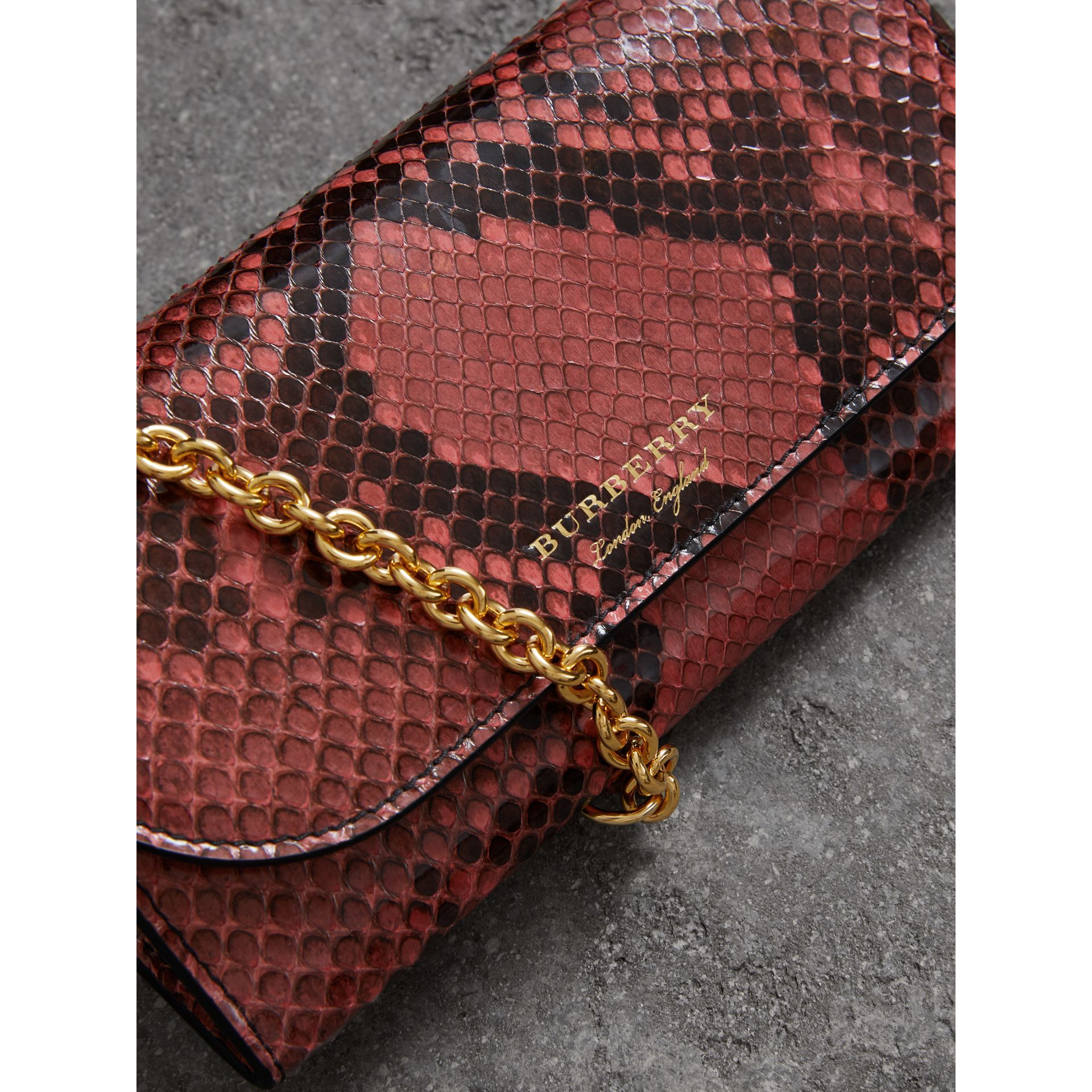 Python Wallet with Chain in Peony - Women | Burberry - gallery image 1
