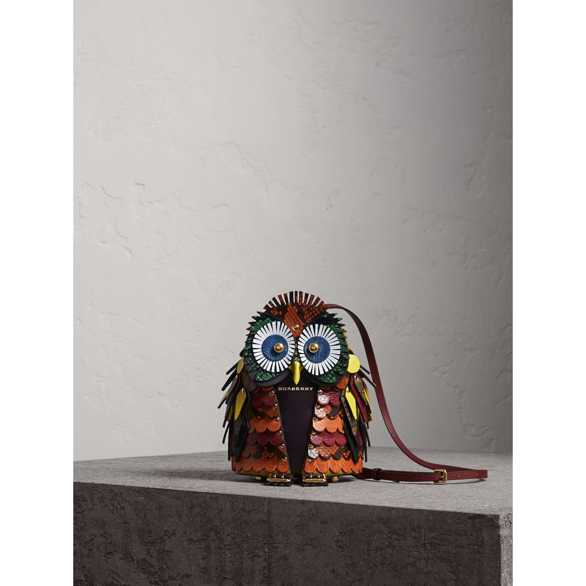 The Owl – Calf Suede and Snakeskin Crossbody Bag - Women | Burberry - gallery image 1