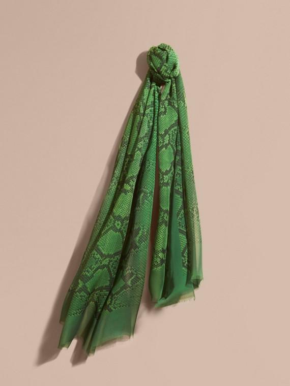 Sciarpa in seta con stampa pitone Verde Brillante