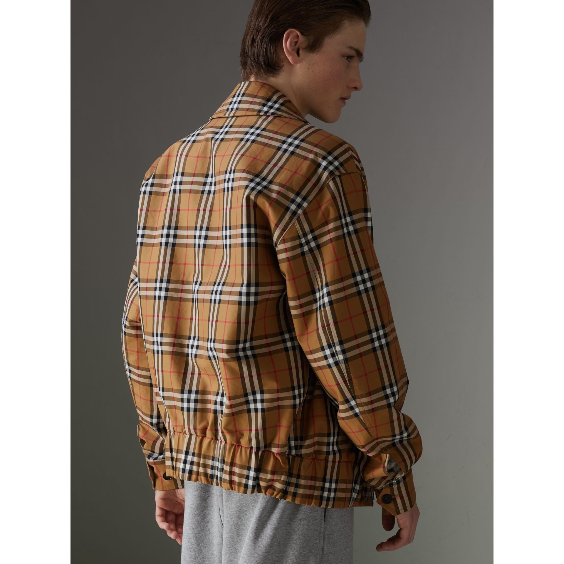 Rainbow Vintage Check Harrington Jacket in Antique Yellow/rainbow - Men | Burberry United Kingdom - gallery image 2