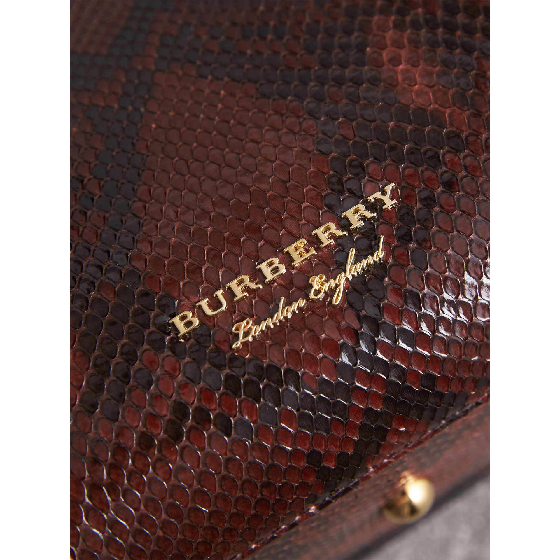 The Medium Banner aus Pythonleder (Schokoladenbraun) - Damen | Burberry - Galerie-Bild 1