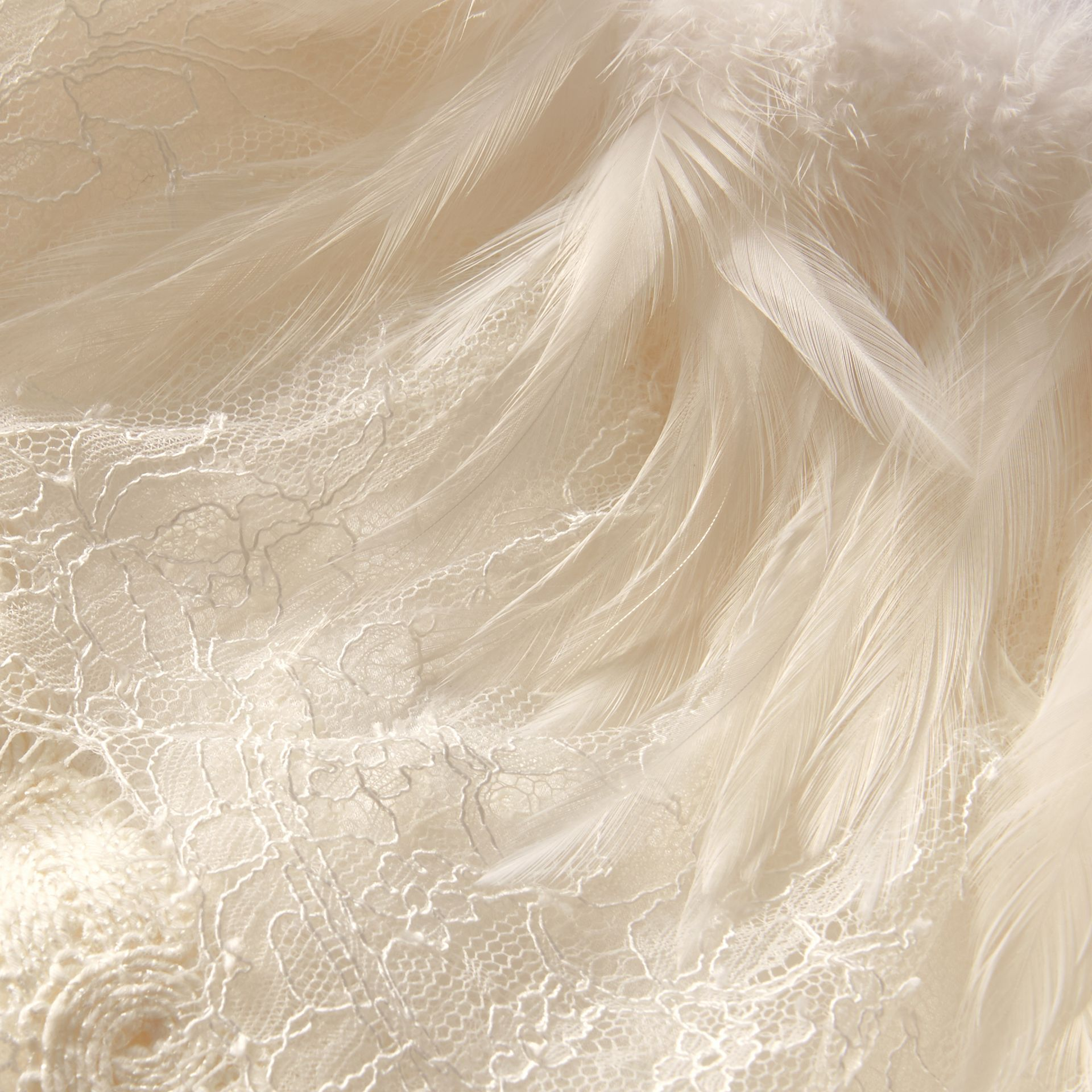 Feather Collar Detail Layered Lace Capelet in White - Women | Burberry Singapore - gallery image 2