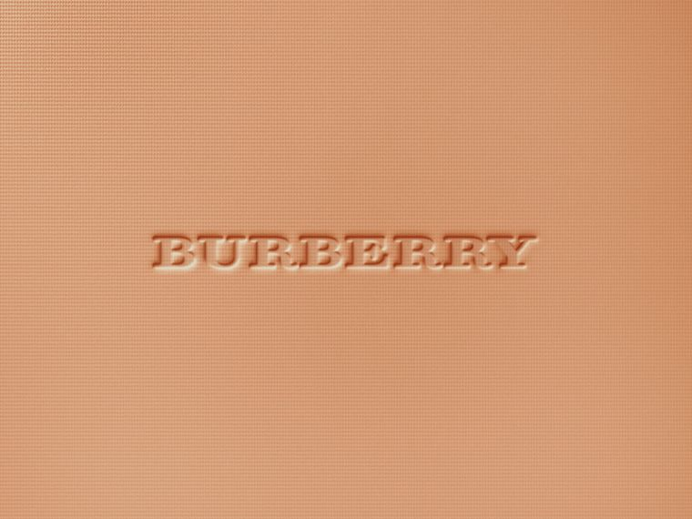Burberry Cashmere Compact – Honey No.32 - Women | Burberry Singapore - cell image 1