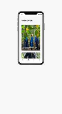 Burberry-App