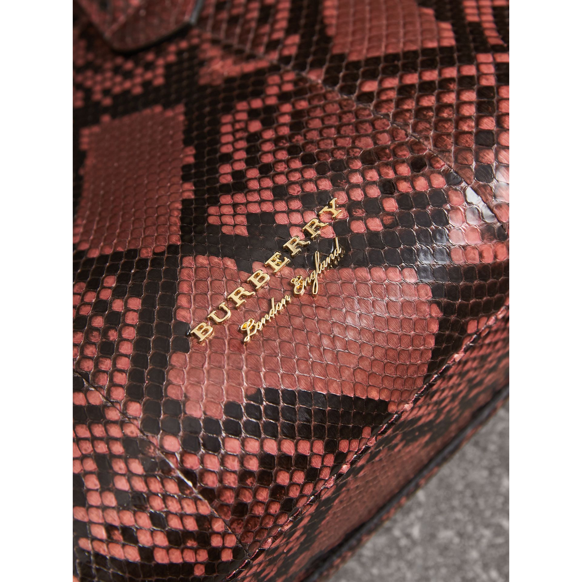 The Small Banner in Python in Peony - Women | Burberry Singapore - gallery image 1