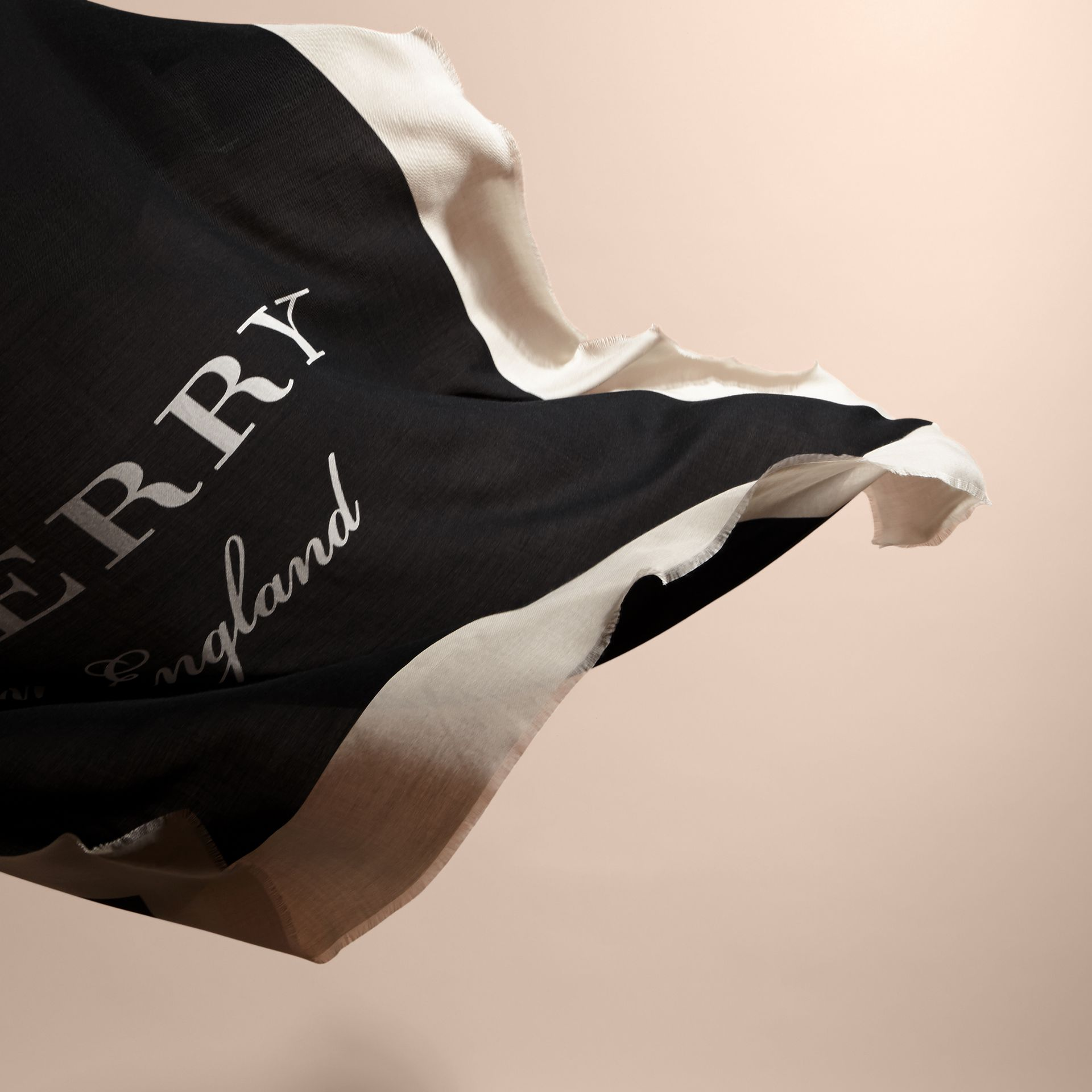 Burberry Print Cashmere Blend Scarf Black/stone - gallery image 5