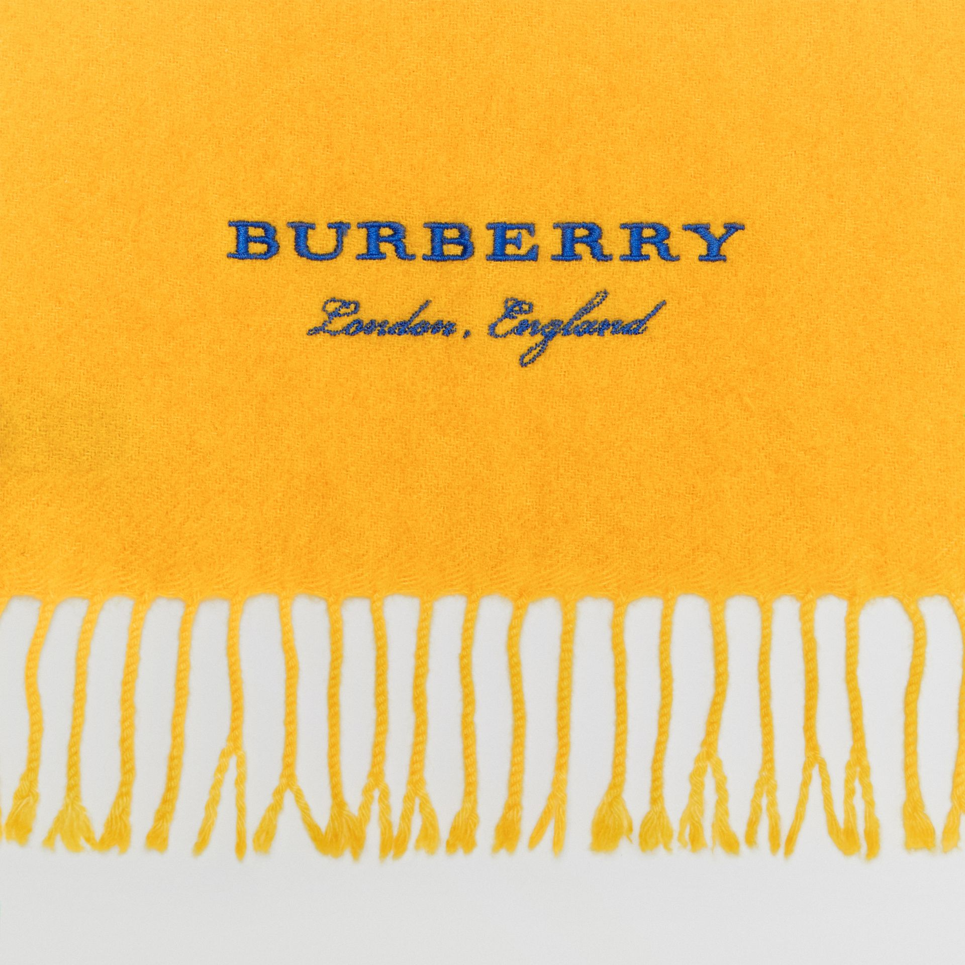 Embroidered Cashmere Fleece Scarf in Saffron Yellow | Burberry Australia - gallery image 1