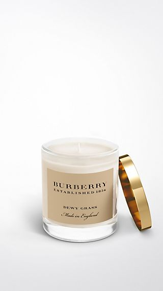 Dewy Grass Fragranced Candle - 200g