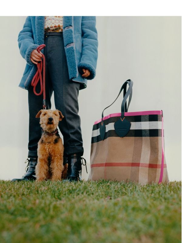 Molly Dilkes with Tracy-Jane and The Giant tote in Canvas check and leather.