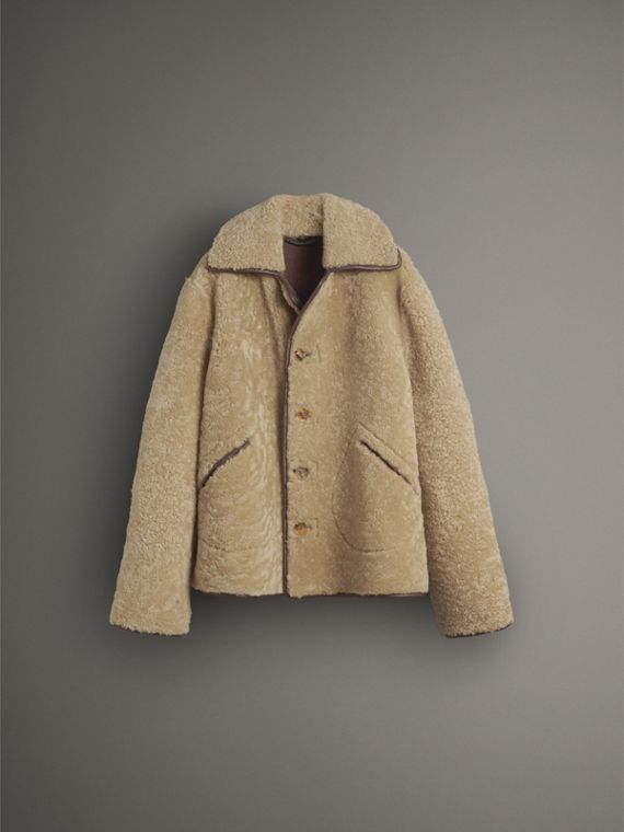 Shearling and Lambskin Jacket in Chocolate/light Citrus - Women | Burberry United Kingdom - cell image 3