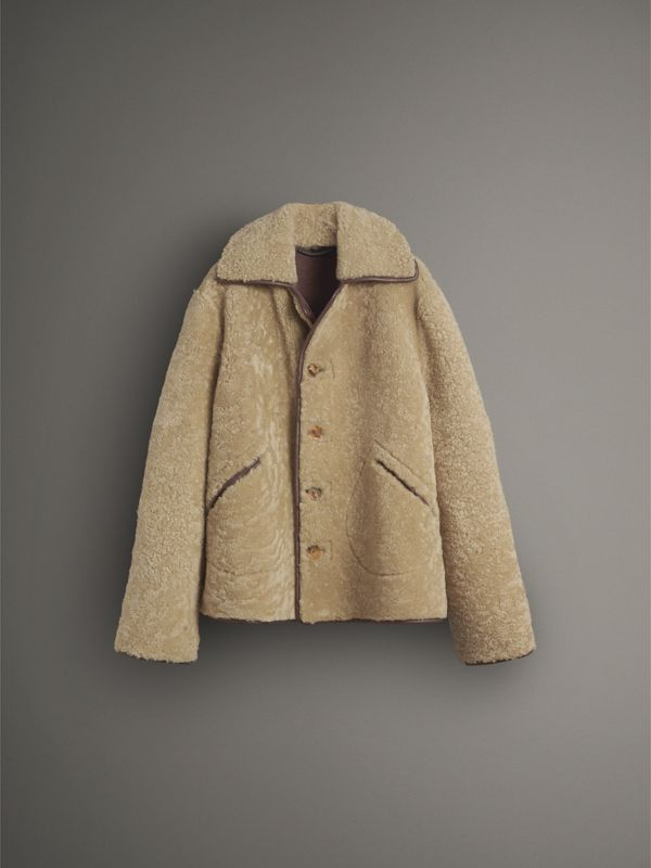 Shearling and Lambskin Jacket in Chocolate/light Citrus - Women | Burberry - cell image 3