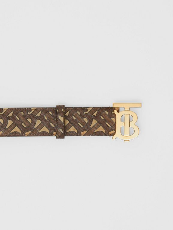 Monogram Stripe E-canvas and Leather Belt in Bridle Brown - Women | Burberry - cell image 1