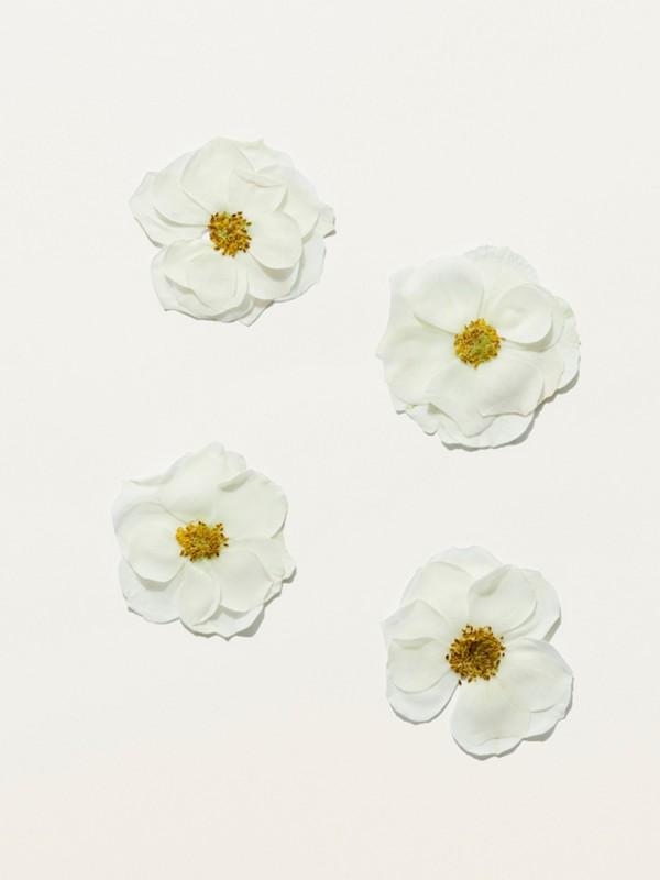 Eau de Toilette Her Blossom de 100ml - Mujer | Burberry - cell image 2