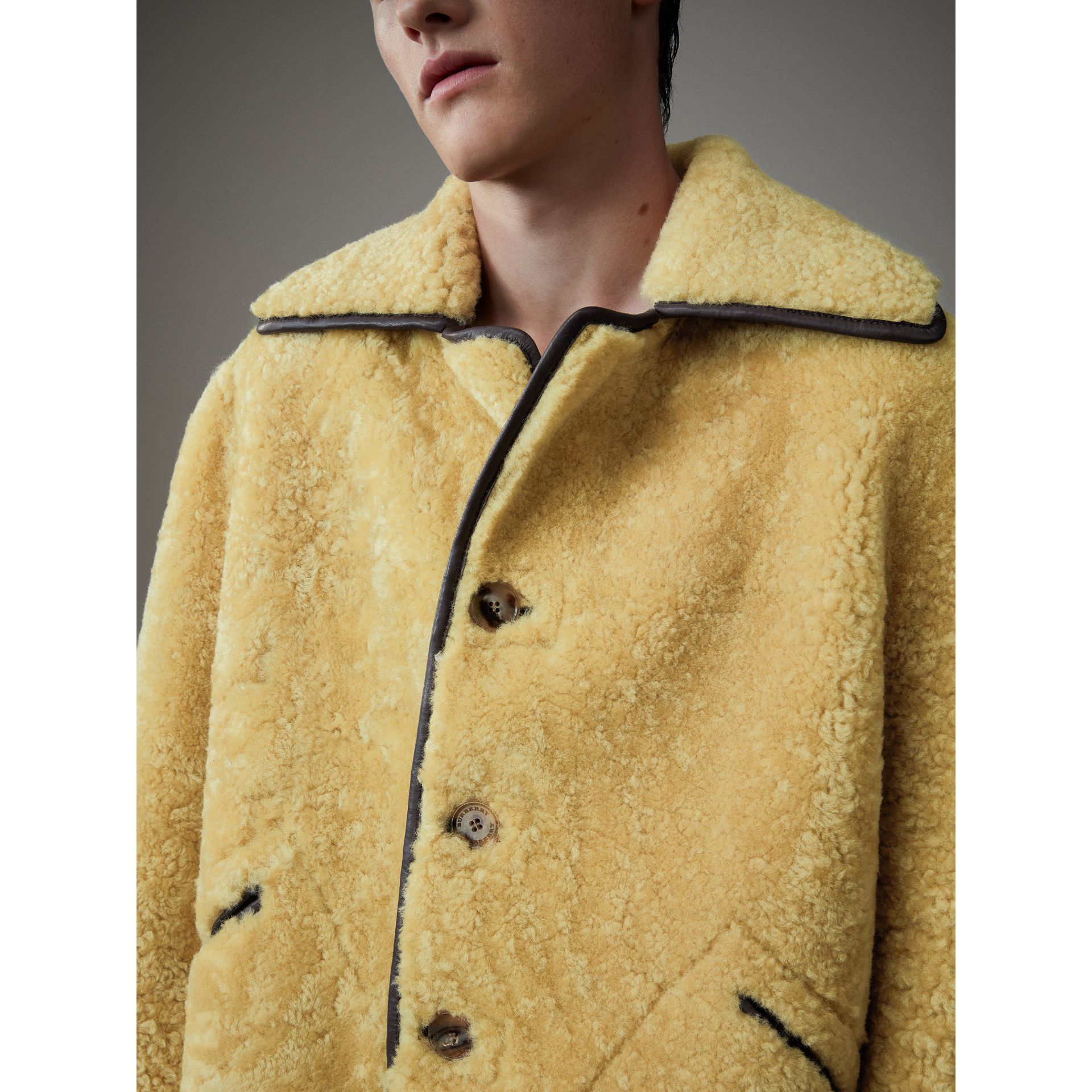Relaxed Fit Shearling and Lambskin Jacket in Chocolate/light Citrus - Men | Burberry United Kingdom - gallery image 1
