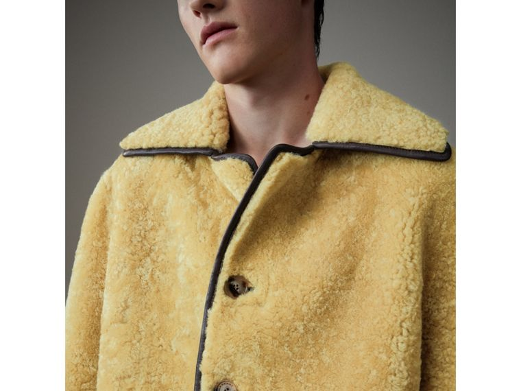 Relaxed Fit Shearling and Lambskin Jacket in Chocolate/light Citrus - Men | Burberry - cell image 1