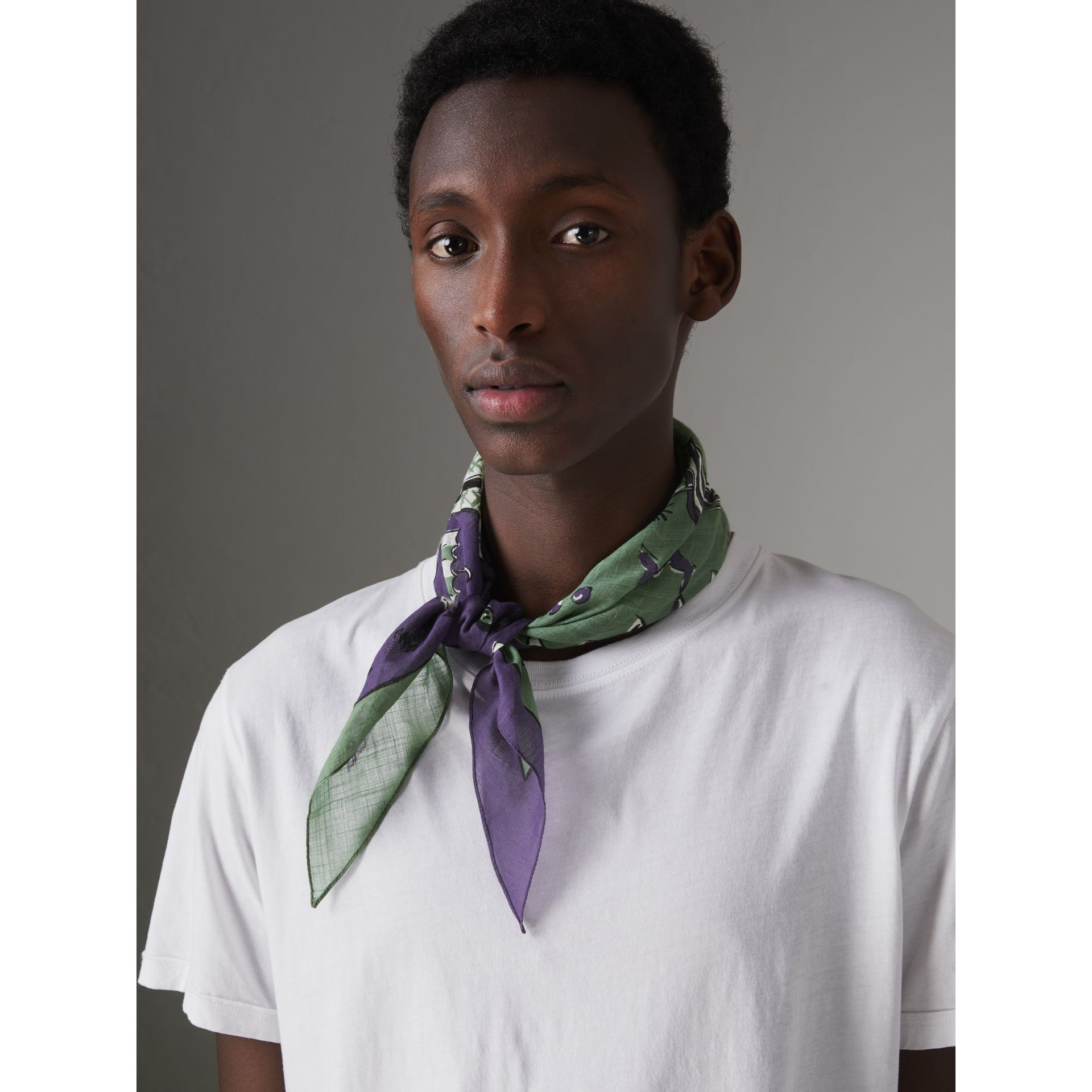 Picnic Print Cotton Scarf in Regency Purple | Burberry United States - gallery image 3