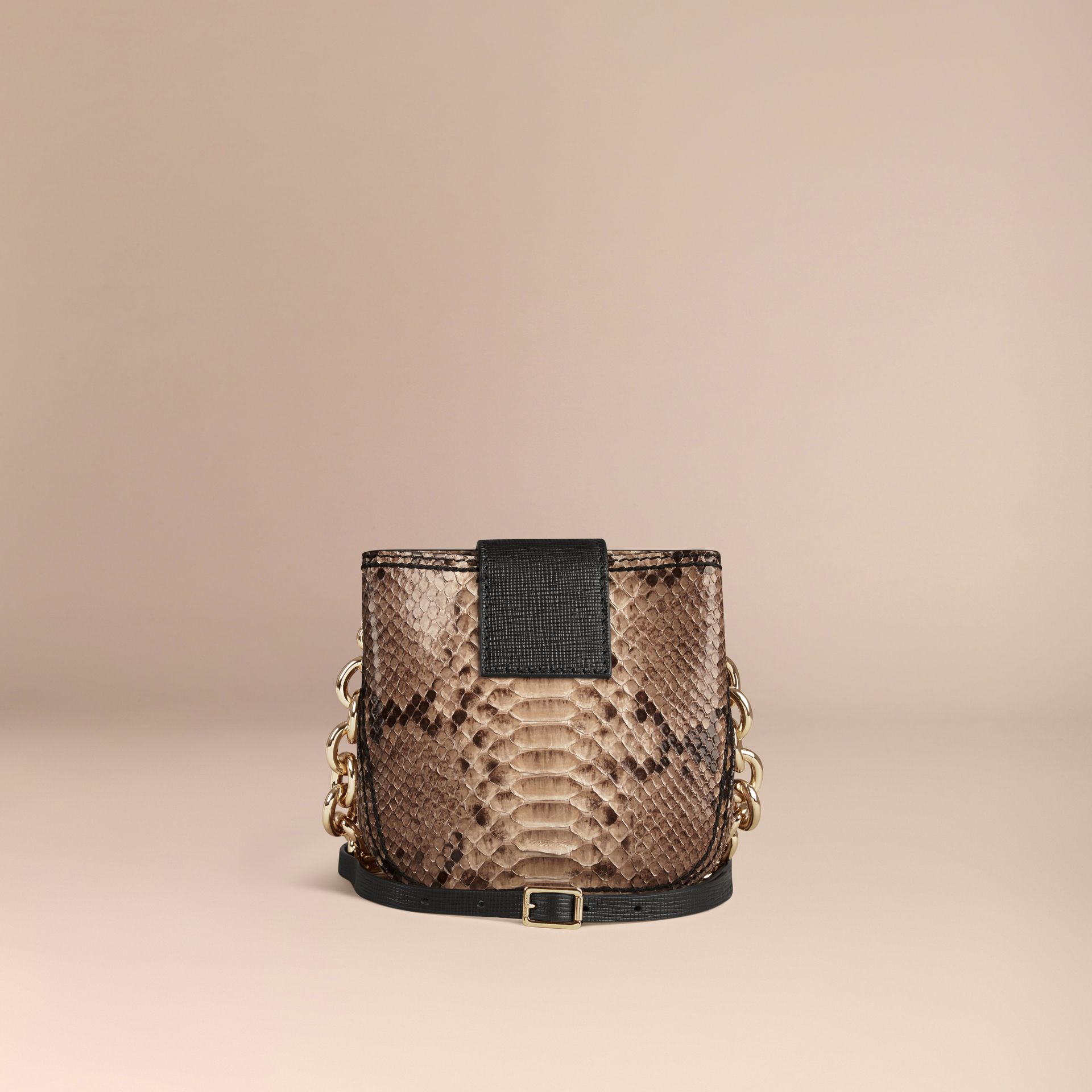 The Small Square Buckle Bag in Python Limited Edition - gallery image 4