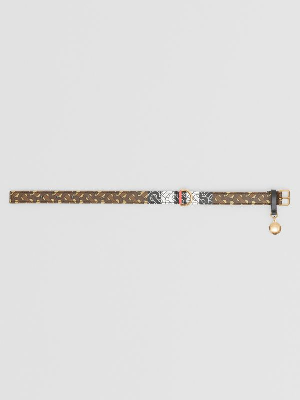 Medium/Large Monogram Stripe E-canvas Dog Collar in Bridle Brown | Burberry - cell image 2